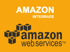 Amazon Integration Plus (M1)